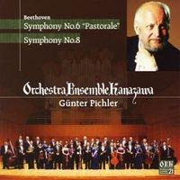 ピヒラー ベートーヴェン:交響曲第6番「田園」、第8番